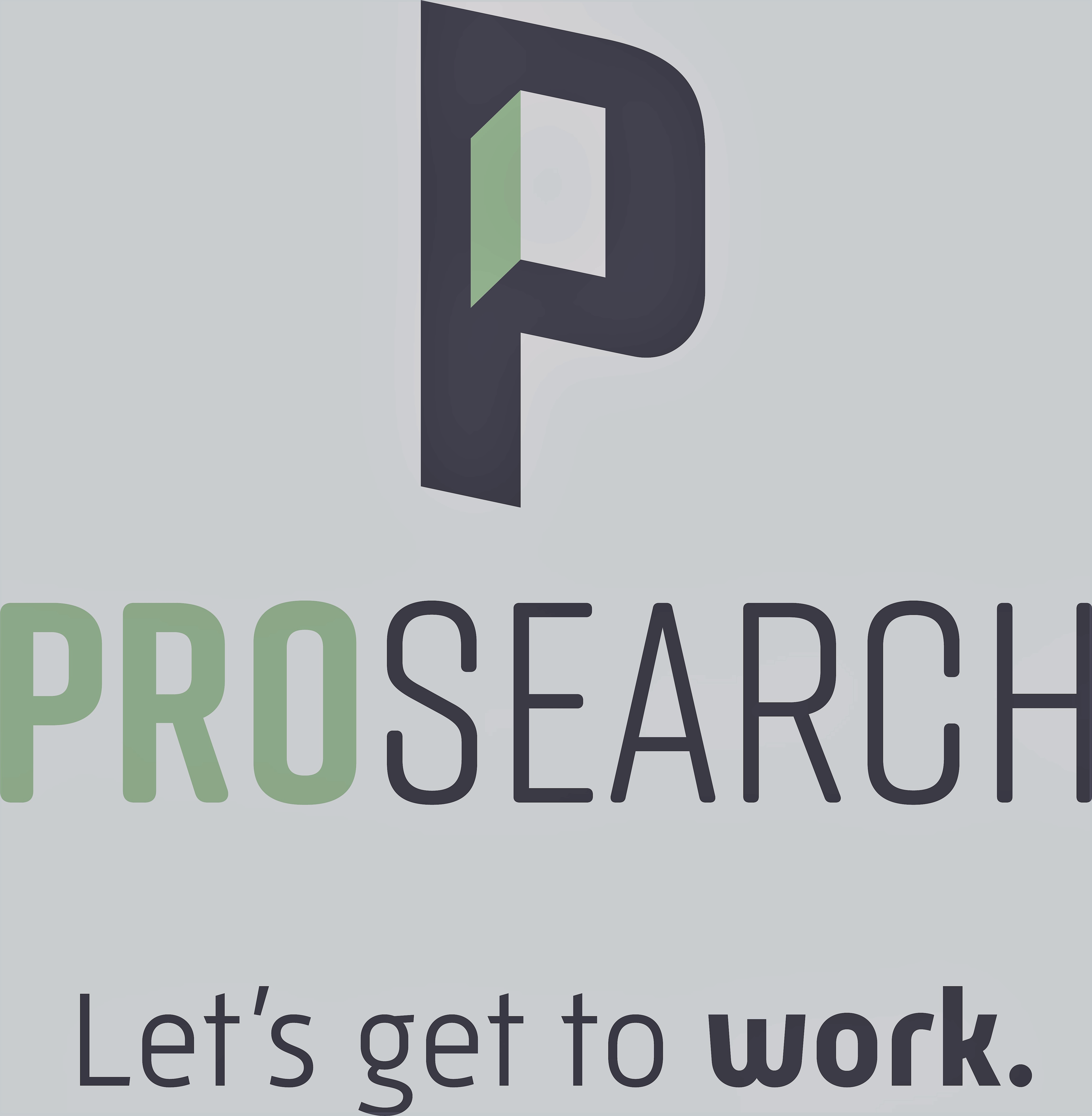 Pro Search Inc