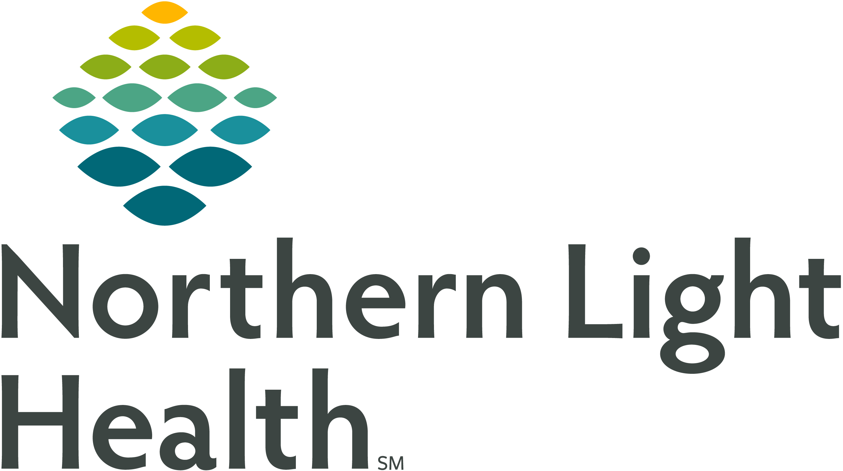 https://www.juniorachievement.org/documents/2972719/0/Northern+Light+Health.jpg/d550bfab-cf11-4e7b-b30f-81308b8e1163?t=1566847852902